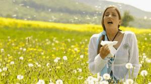 Como tratar las alergias estacionales al polen