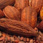 ¿Se puede eliminar las estrias con manteca de cacao?