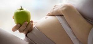 Requerimientos De Calorías Durante El Embarazo